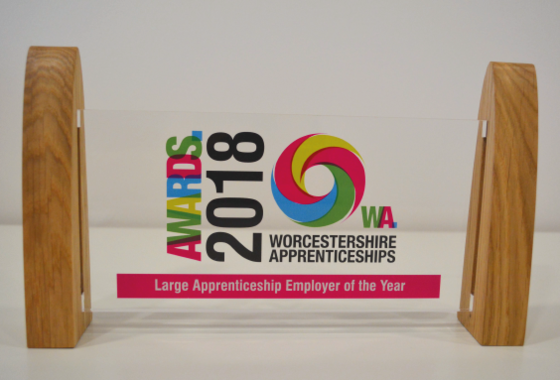 We won the award for Large Employer of the Year 2018!