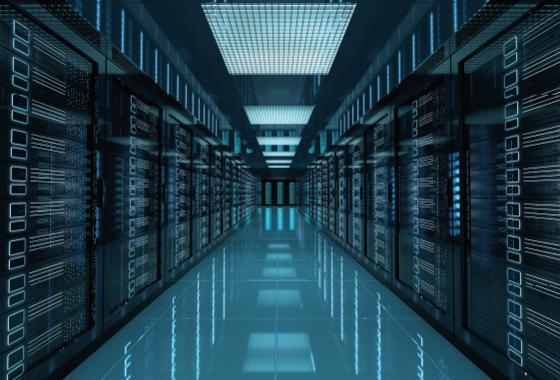 Hosting & Data Backup