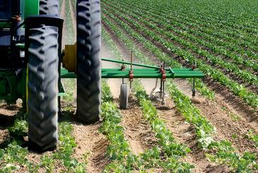 Clynderwen & Cardiganshire Farmers image #1