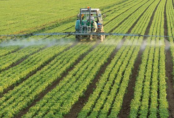 Fine Agrochemicals
