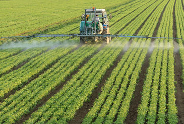 Fine Agrochemicals image #1
